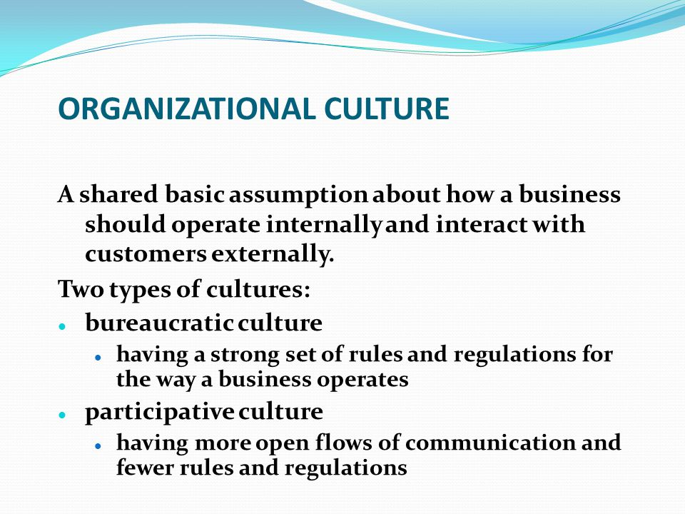 ORGANIZATIONAL CULTURE A shared basic assumption about how a business should operate internally and interact with customers externally. Two types of c
