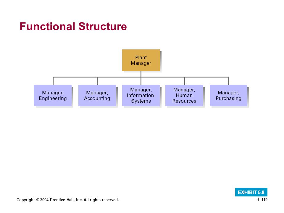 Copyright © 2004 Prentice Hall, Inc. All rights reserved.1–119 Functional Structure EXHIBIT 5.8