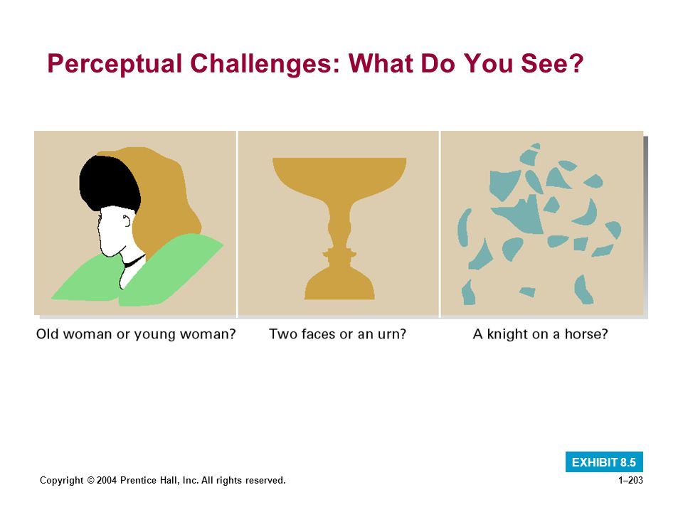 Copyright © 2004 Prentice Hall, Inc. All rights reserved.1–203 Perceptual Challenges: What Do You See? EXHIBIT 8.5