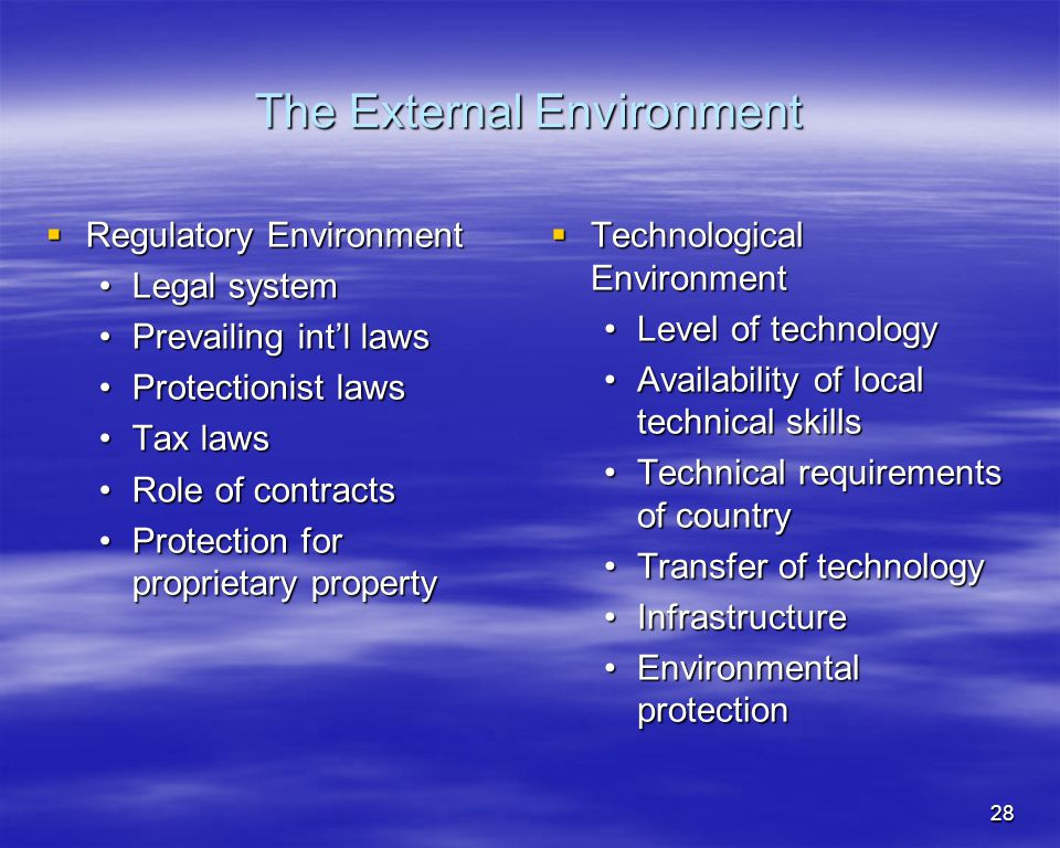 28 The External Environment Regulatory Environment Regulatory Environment Legal systemLegal system Prevailing intl lawsPrevailing intl laws Protection