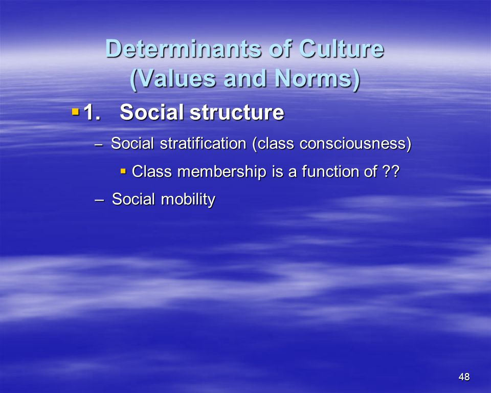 48 Determinants of Culture (Values and Norms) 1.Social structure 1.Social structure – Social stratification (class consciousness) Class membership is