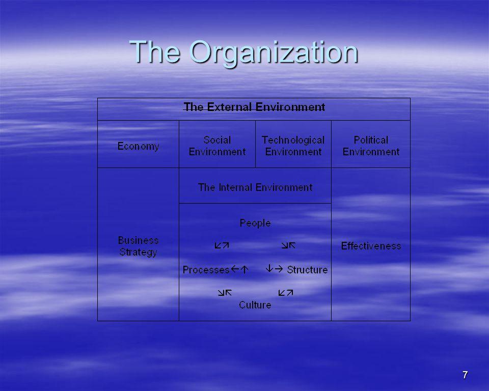 7 The Organization