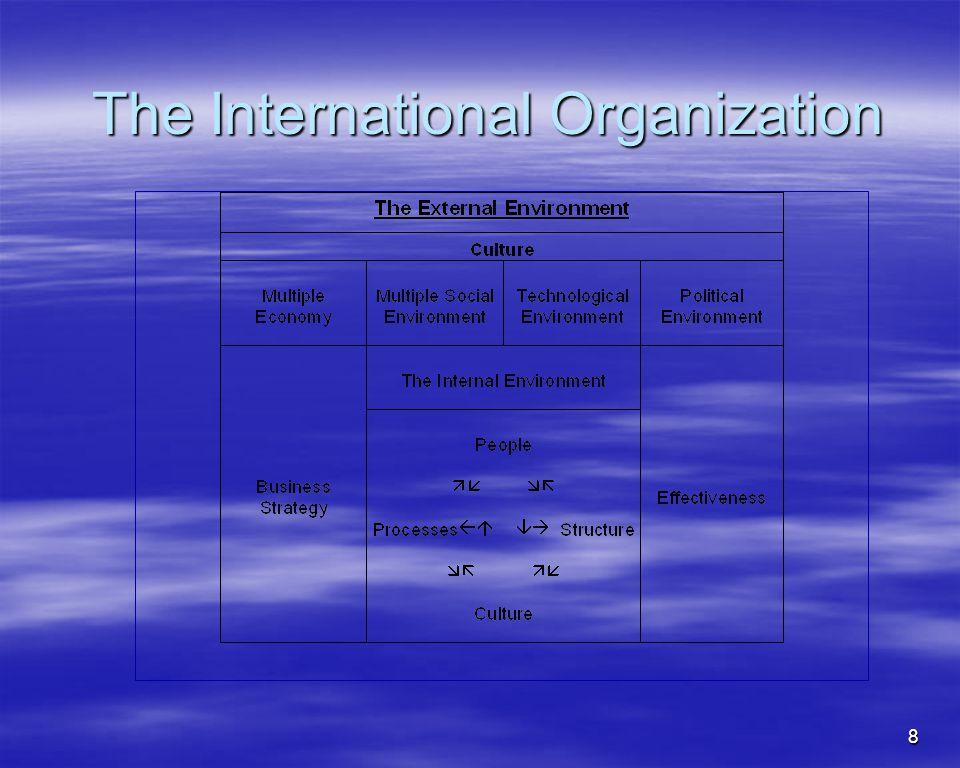 8 The International Organization