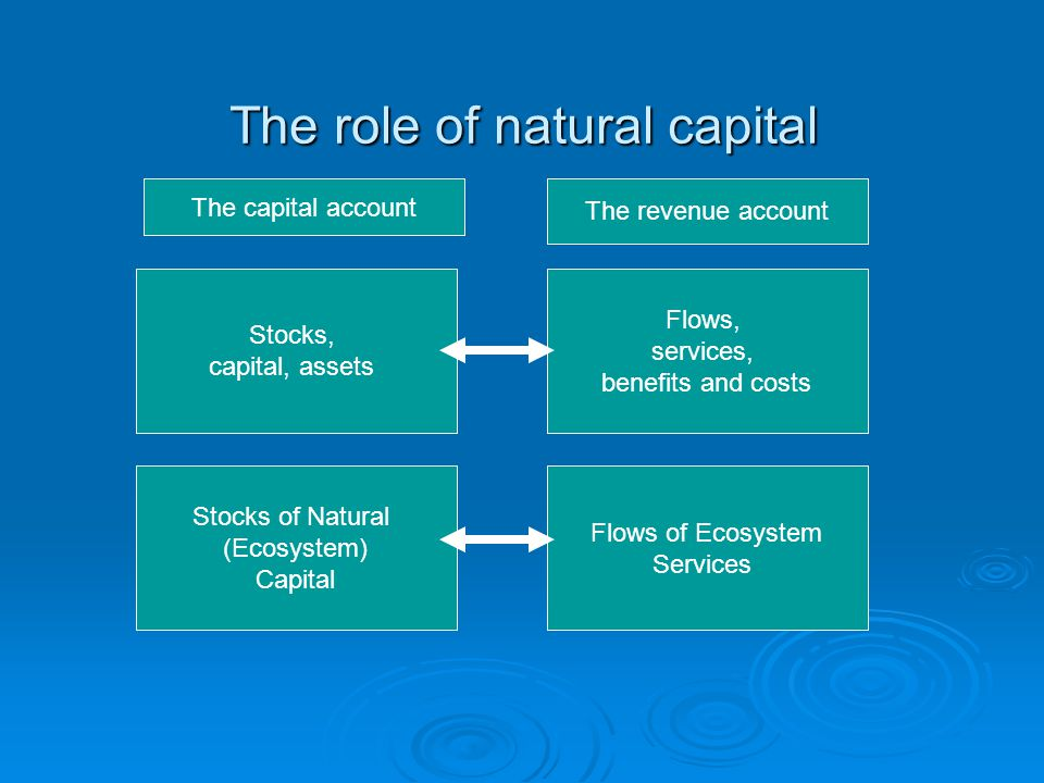 The role of natural capital Stocks, capital, assets Flows, services, benefits and costs Flows of Ecosystem Services Stocks of Natural (Ecosystem) Capital The capital account The revenue account