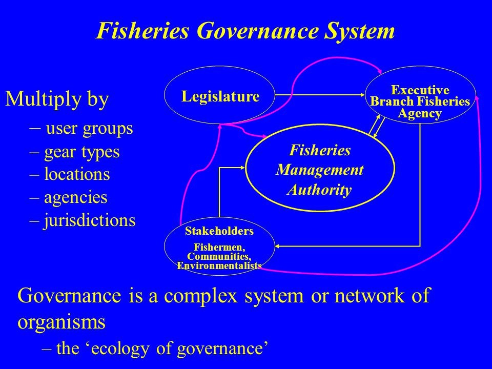 Legislature Executive Branch Fisheries Agency Fisheries Management Authority Stakeholders Fishermen, Communities, Environmentalists Multiply by – user
