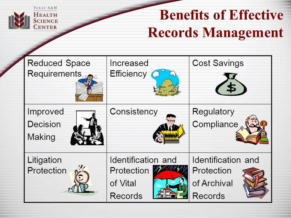 Effective Records Management Secure Records Storage Records Disposition Training on Records Management Effective Filing Systems Input into Records Retention Schedule