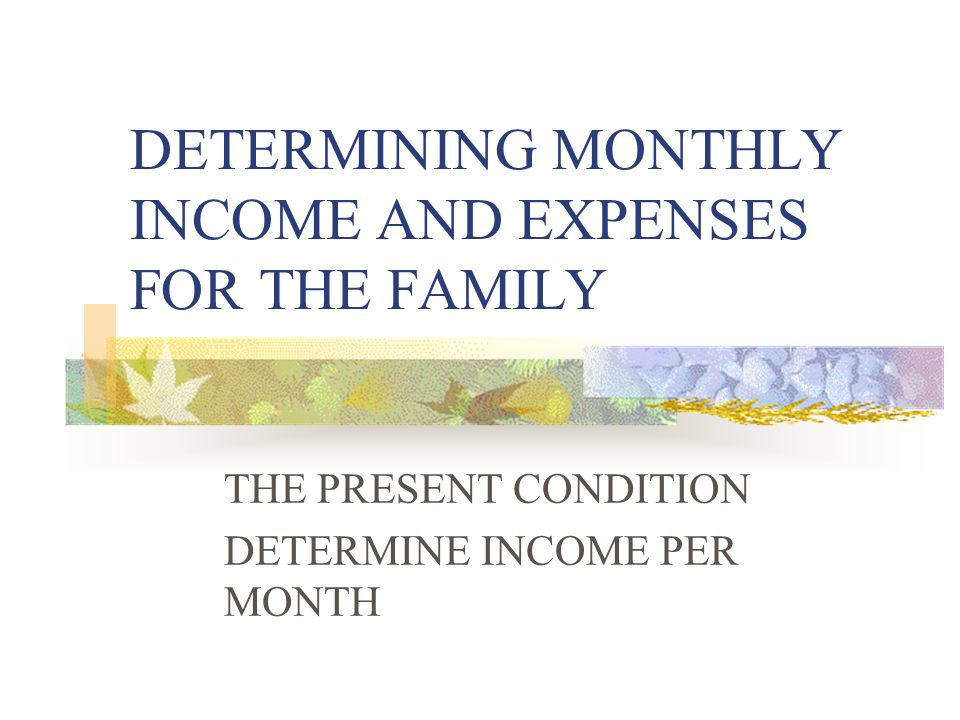 DETERMINING MONTHLY INCOME AND EXPENSES FOR THE FAMILY THE PRESENT CONDITION DETERMINE INCOME PER MONTH