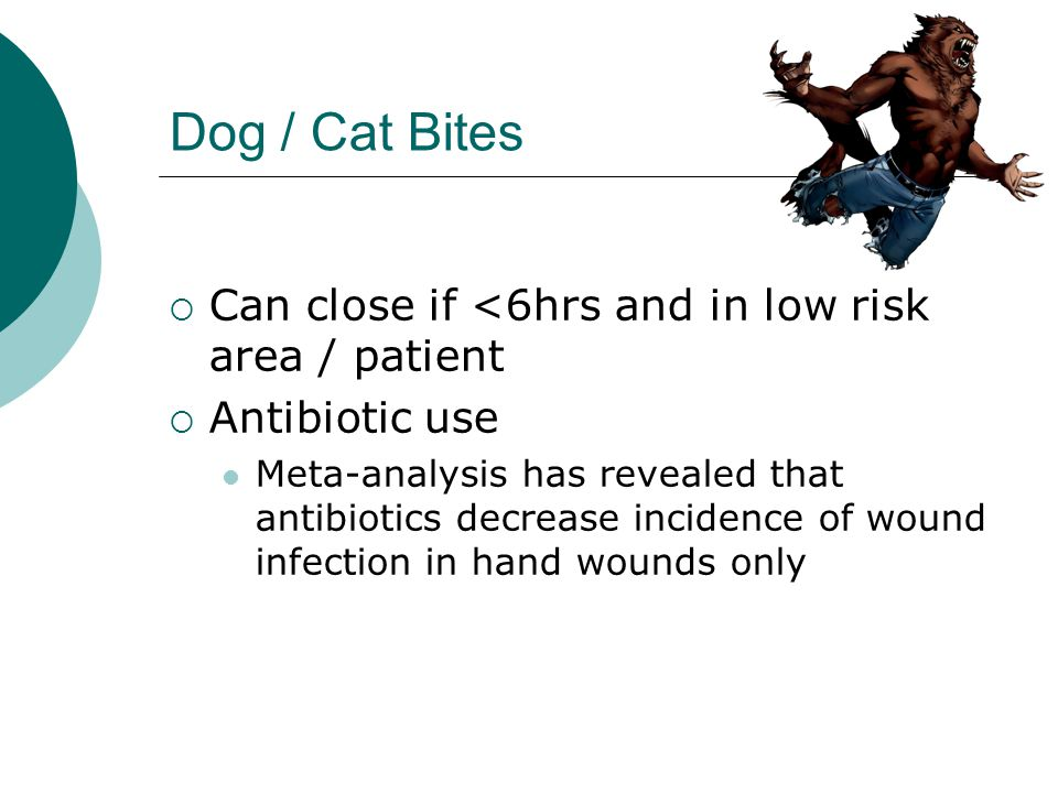 Dog / Cat Bites Can close if <6hrs and in low risk area / patient Antibiotic use Meta-analysis has revealed that antibiotics decrease incidence of wou