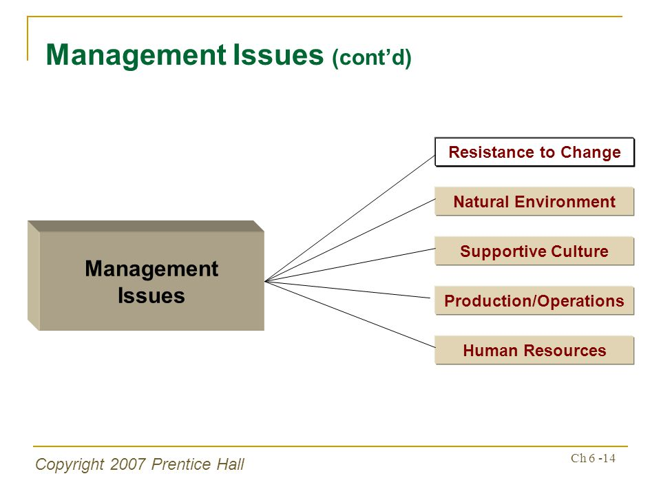 Copyright 2007 Prentice Hall Ch 6 -14 Management Issues (contd) Management Issues Supportive Culture Production/Operations Human Resources Resistance to Change Natural Environment