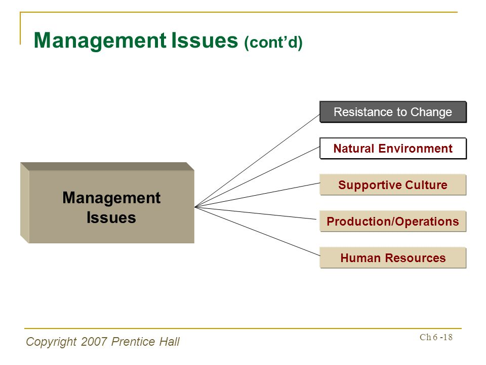 Copyright 2007 Prentice Hall Ch 6 -18 Management Issues (contd) Management Issues Supportive Culture Production/Operations Human Resources Resistance to Change Natural Environment