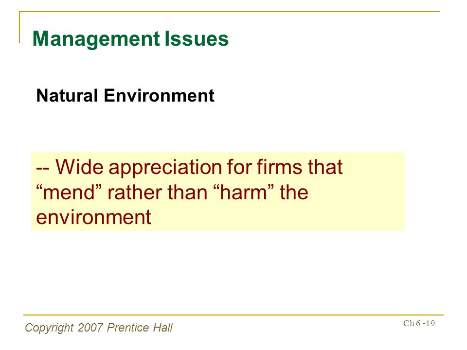 Copyright 2007 Prentice Hall Ch 6 -19 Management Issues Natural Environment -- Wide appreciation for firms that mend rather than harm the environment