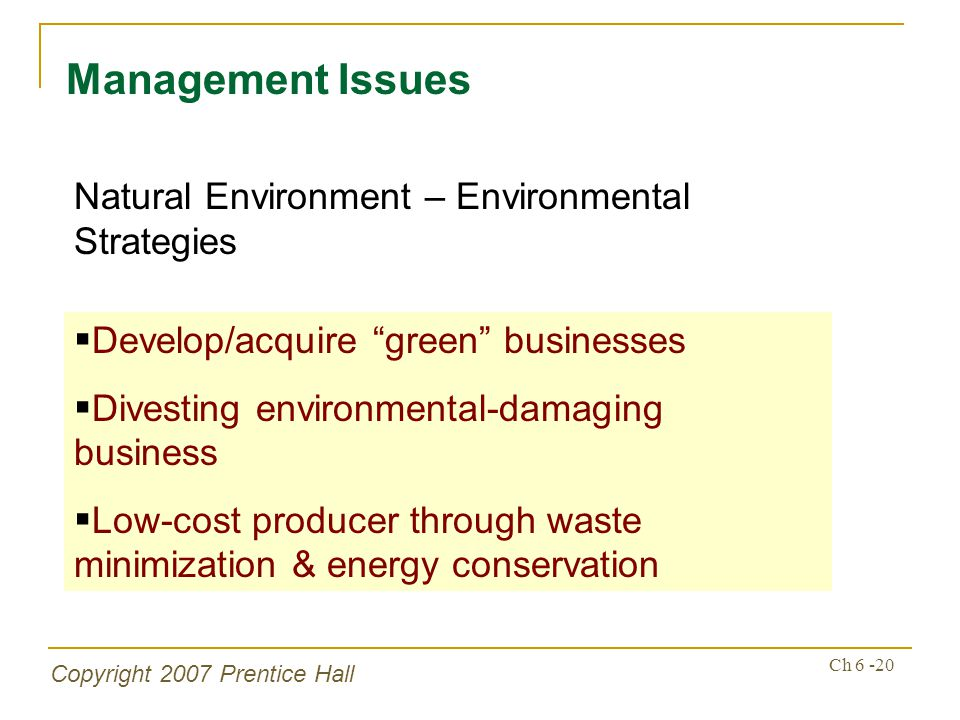Copyright 2007 Prentice Hall Ch 6 -20 Management Issues Natural Environment – Environmental Strategies Develop/acquire green businesses Divesting envi