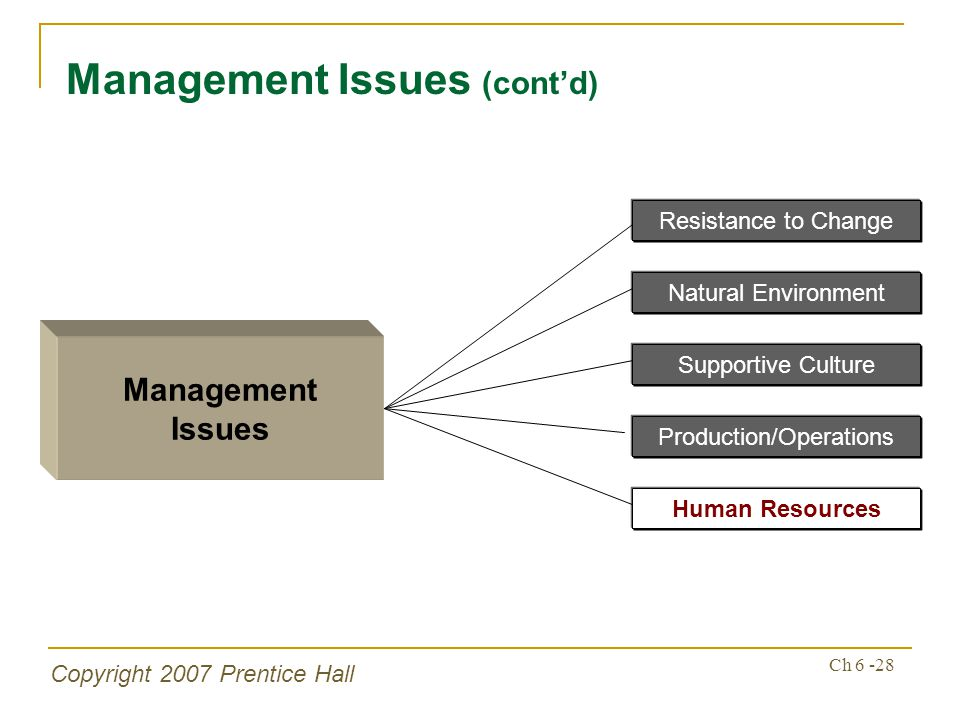 Copyright 2007 Prentice Hall Ch 6 -28 Management Issues (contd) Management Issues Supportive Culture Production/Operations Human Resources Resistance