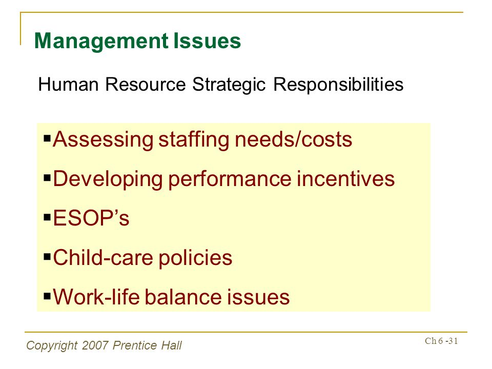 Copyright 2007 Prentice Hall Ch 6 -31 Management Issues Human Resource Strategic Responsibilities Assessing staffing needs/costs Developing performance incentives ESOPs Child-care policies Work-life balance issues