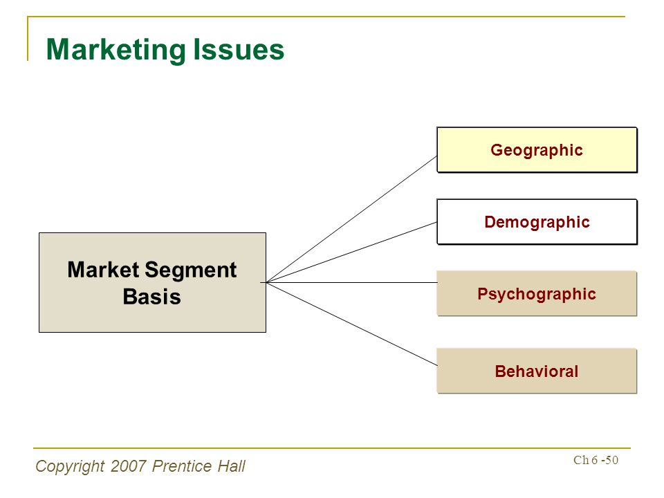 Copyright 2007 Prentice Hall Ch 6 -50 Marketing Issues Market Segment Basis Psychographic Behavioral Geographic Demographic