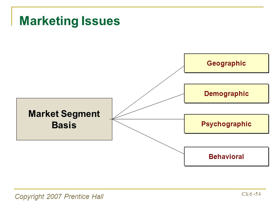 Copyright 2007 Prentice Hall Ch 6 -54 Marketing Issues Market Segment Basis Psychographic Behavioral Geographic Demographic