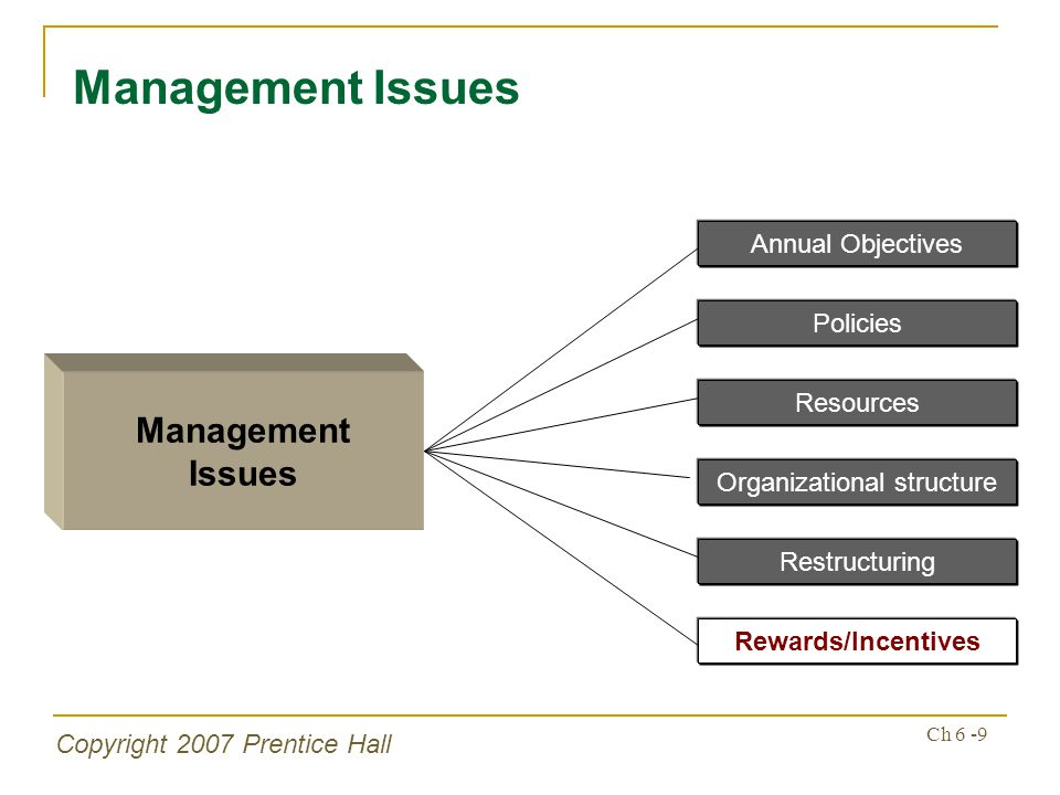 Copyright 2007 Prentice Hall Ch 6 -20 Management Issues Natural Environment – Environmental Strategies Develop/acquire green businesses Divesting environmental-damaging business Low-cost producer through waste minimization & energy conservation