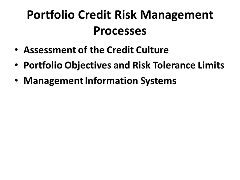 Portfolio Credit Risk Management Processes Assessment of the Credit Culture Portfolio Objectives and Risk Tolerance Limits Management Information Systems