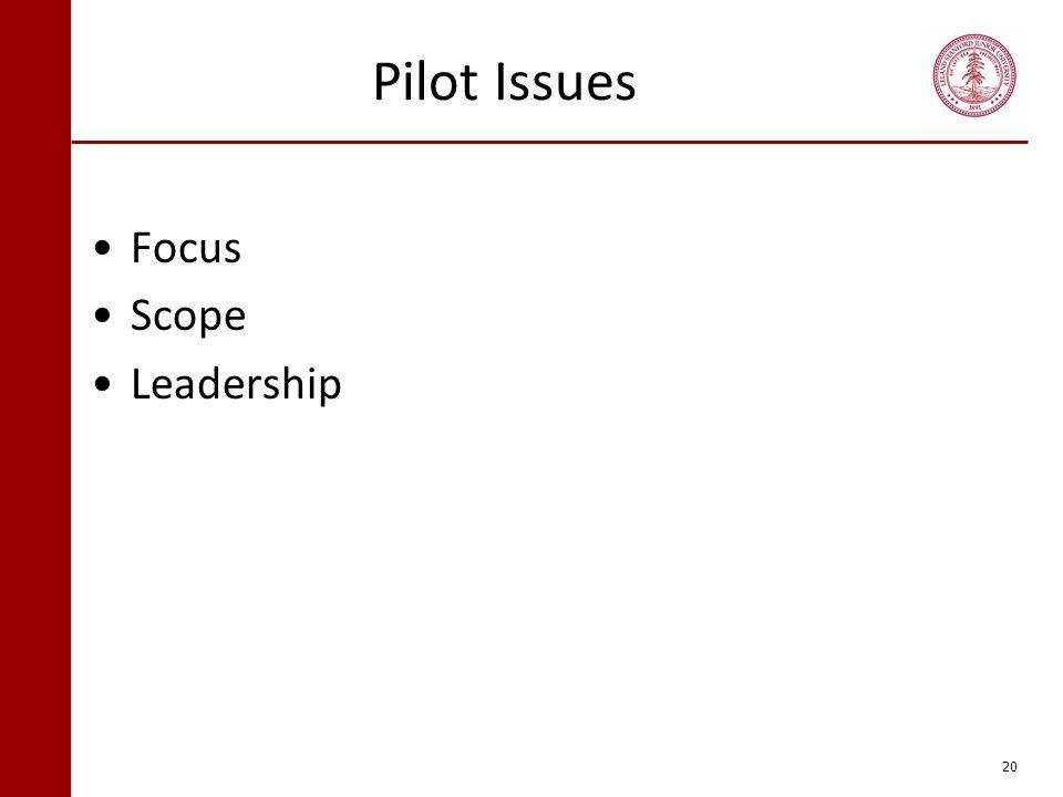 Pilot Issues Focus Scope Leadership 20