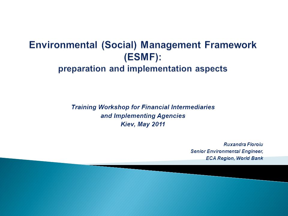 Training Workshop for Financial Intermediaries and Implementing Agencies Kiev, May 2011 Ruxandra Floroiu Senior Environmental Engineer, ECA Region, World Bank