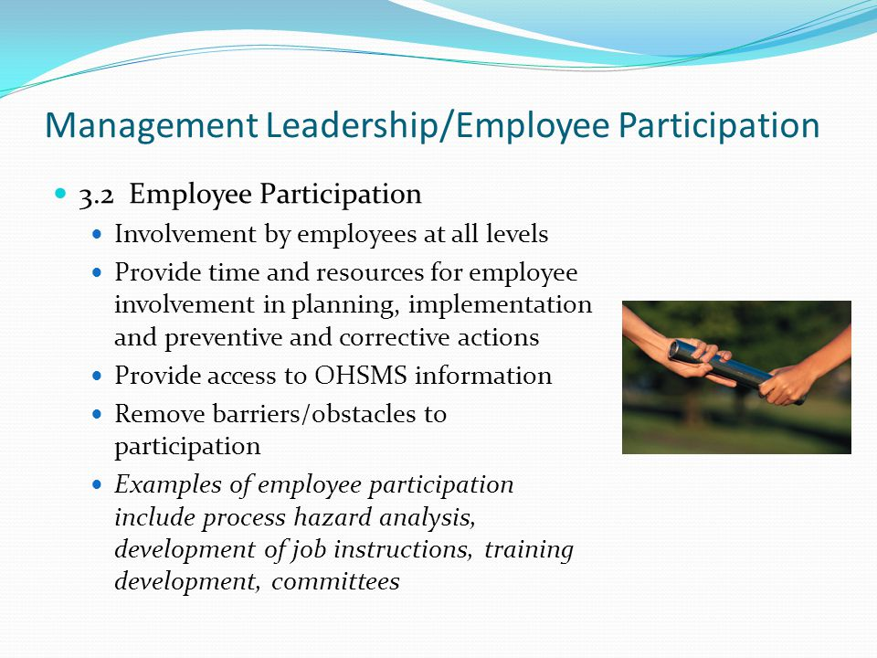 Management Leadership/Employee Participation 3.2 Employee Participation Involvement by employees at all levels Provide time and resources for employee involvement in planning, implementation and preventive and corrective actions Provide access to OHSMS information Remove barriers/obstacles to participation Examples of employee participation include process hazard analysis, development of job instructions, training development, committees