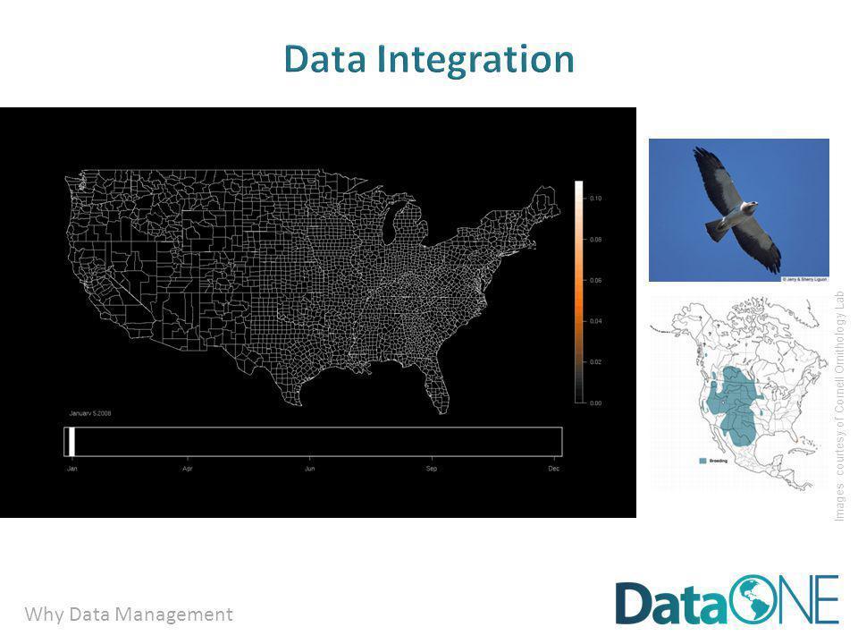 Why Data Management Images courtesy of Cornell Ornithology Lab
