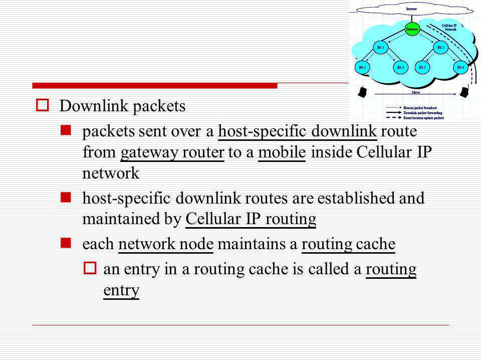 Downlink packets packets sent over a host-specific downlink route from gateway router to a mobile inside Cellular IP network host-specific downlink ro