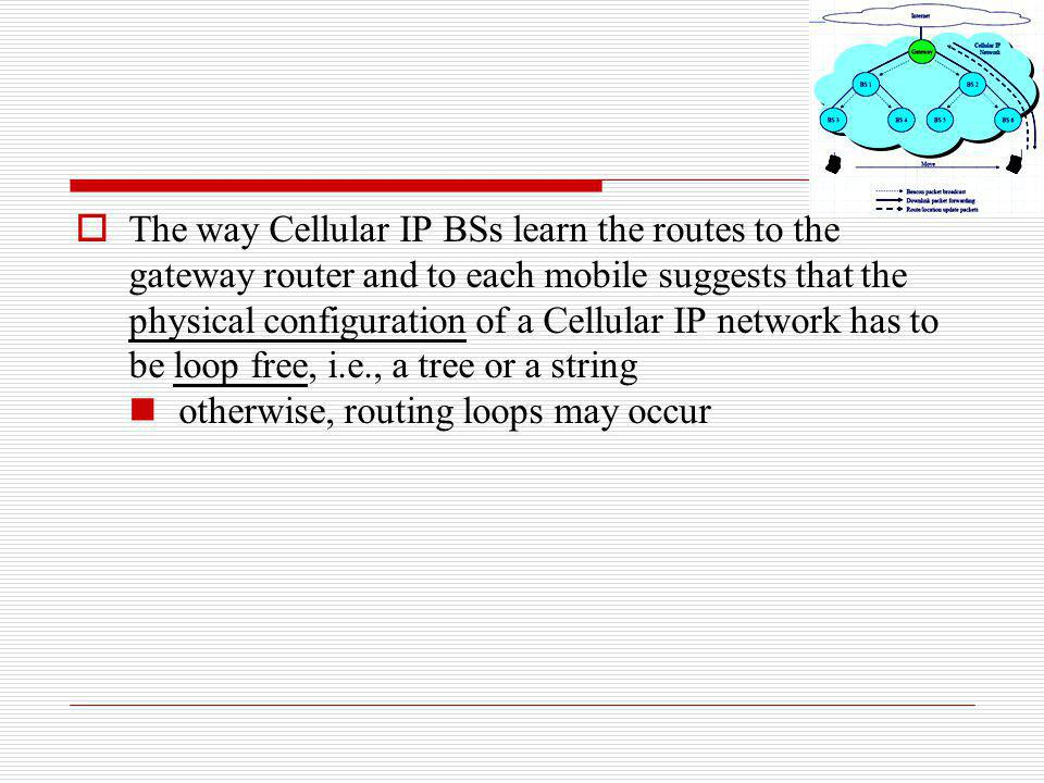 The way Cellular IP BSs learn the routes to the gateway router and to each mobile suggests that the physical configuration of a Cellular IP network ha