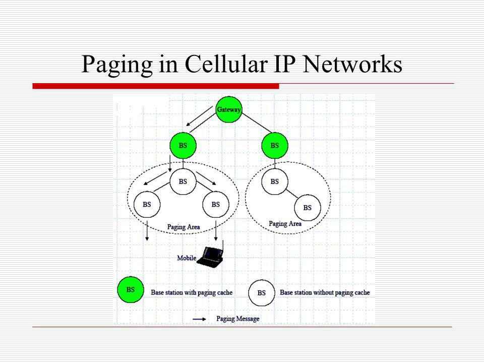Paging in Cellular IP Networks