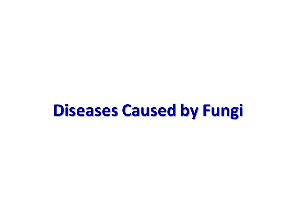 Diseases Caused by Fungi
