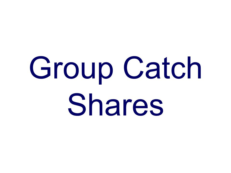 Group Catch Shares