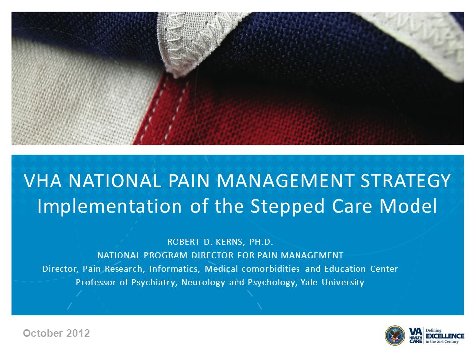 VHA NATIONAL PAIN MANAGEMENT STRATEGY Implementation of the Stepped Care Model ROBERT D.