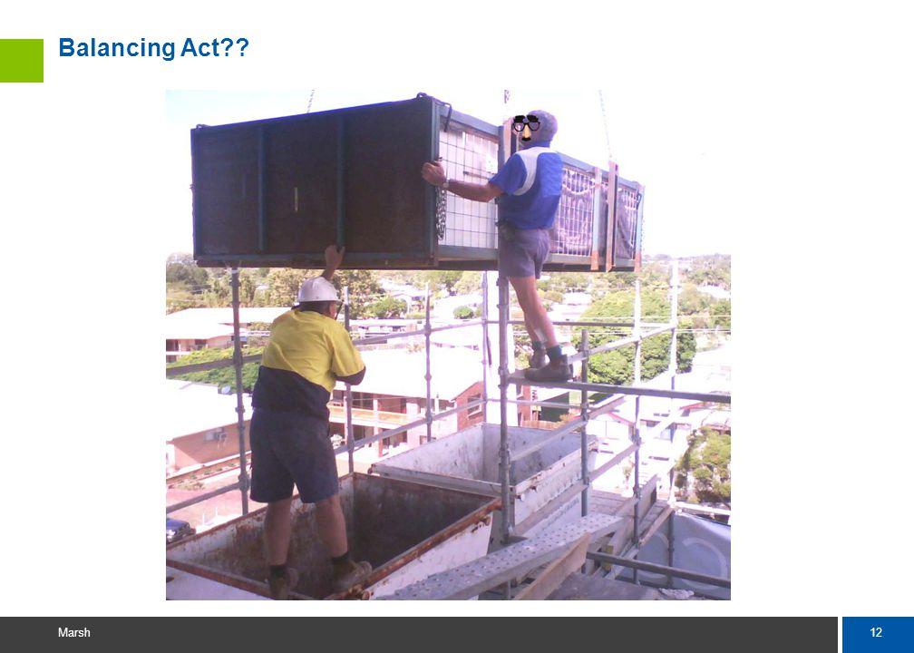 12 Marsh Balancing Act