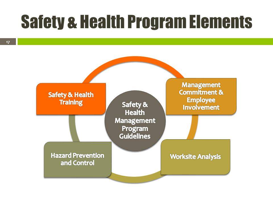 Safety & Health Program Elements 17