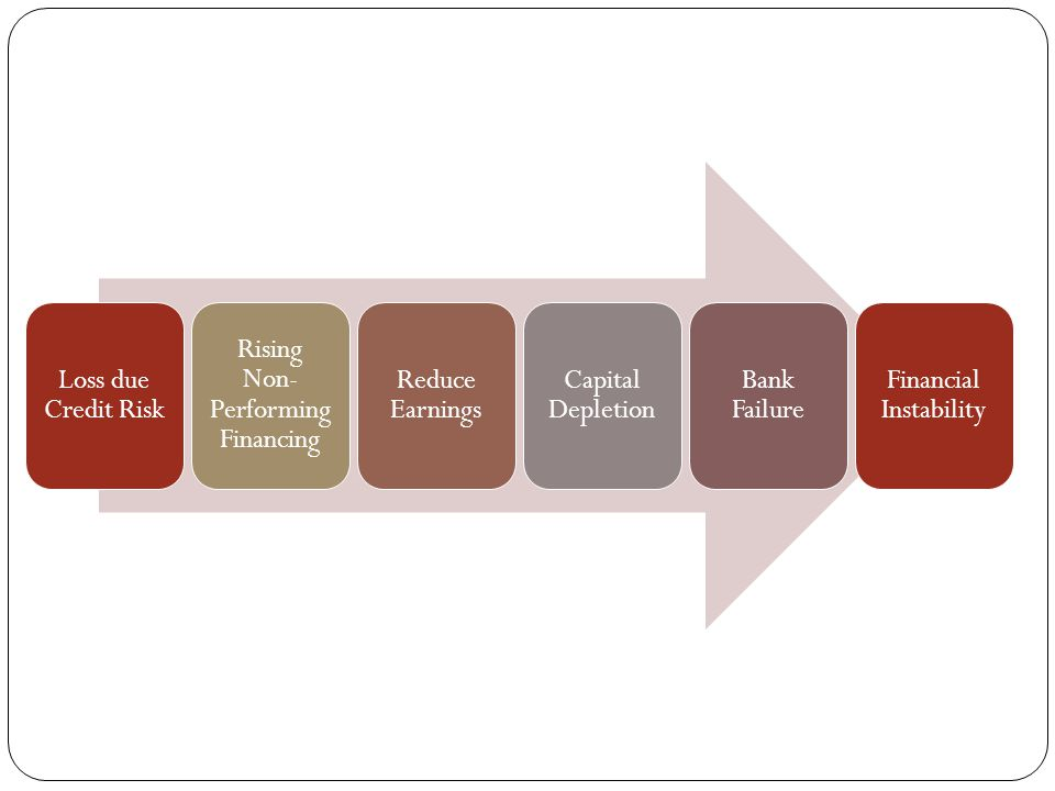 Loss due Credit Risk Rising Non- Performing Financing Reduce Earnings Capital Depletion Bank Failure Financial Instability