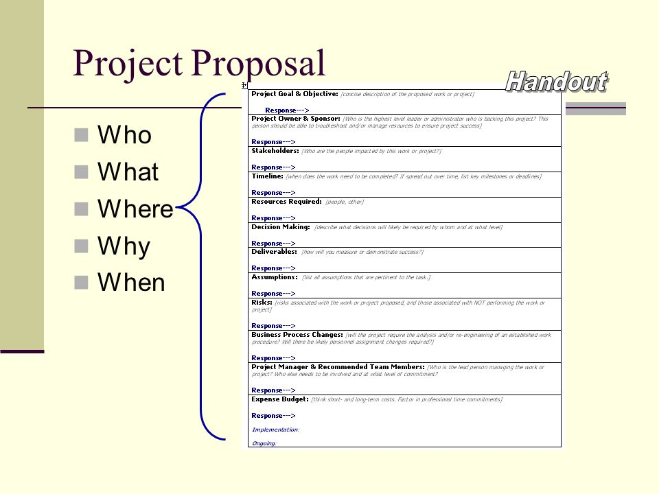 Project Proposal Who What Where Why When