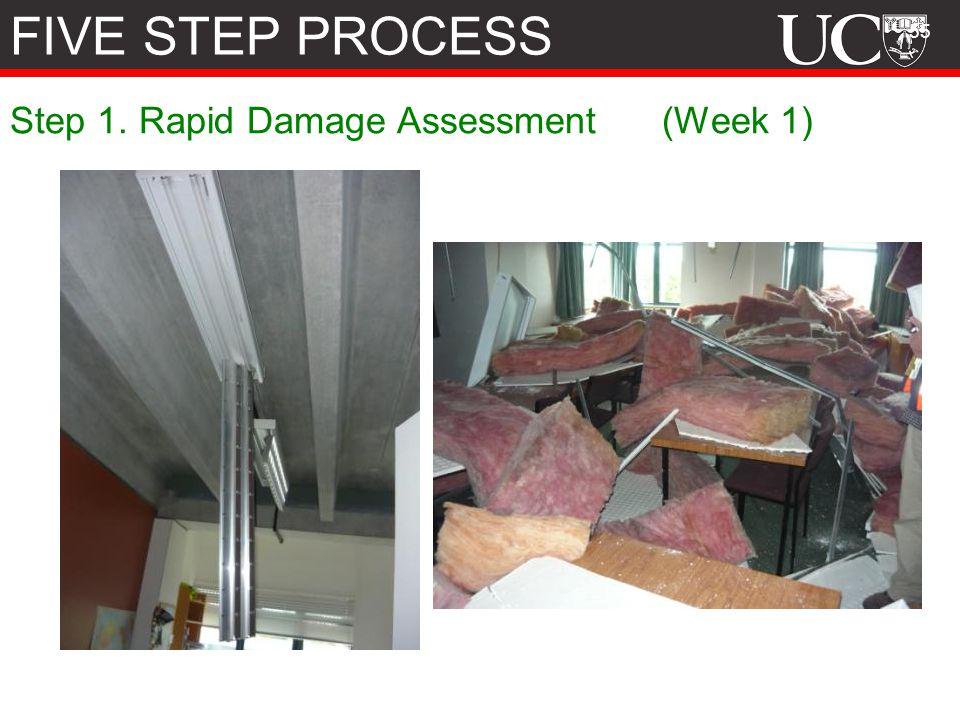 55 Step 1. Rapid Damage Assessment (Week 1) FIVE STEP PROCESS