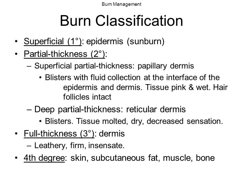 Burn Management Classification of Burn Depth