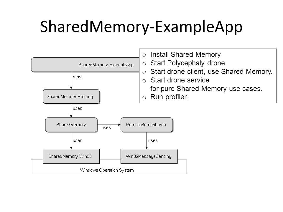 SharedMemory-ExampleApp o Install Shared Memory o Start Polycephaly drone.