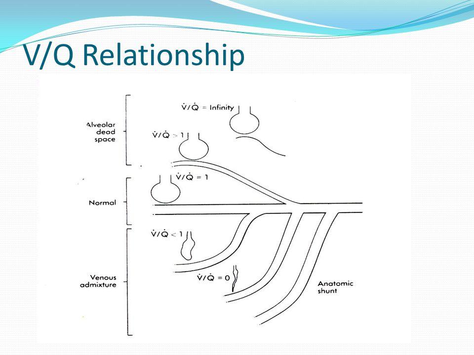 V/Q Relationship