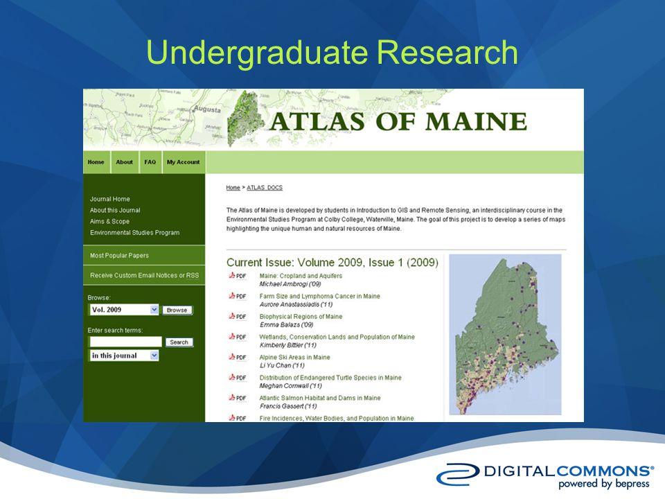 Undergraduate Research
