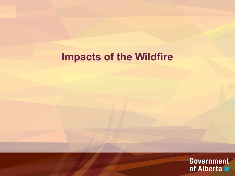 Impacts of the Wildfire