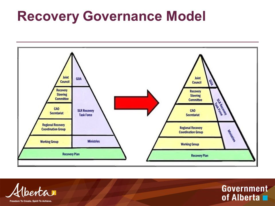 Recovery Governance Model
