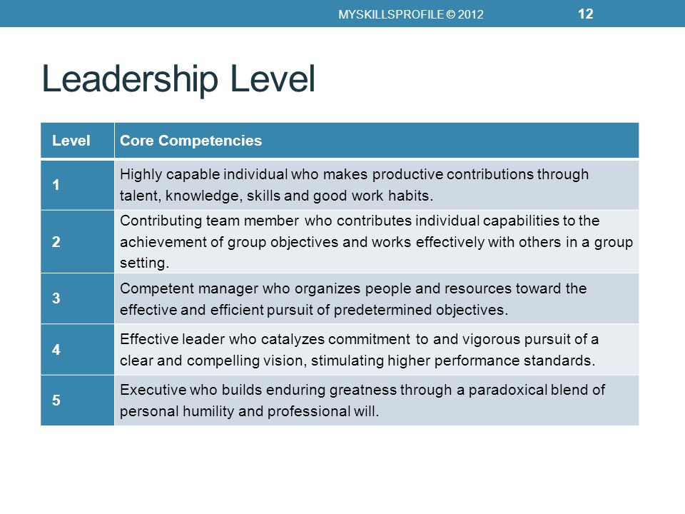 Leadership Level MYSKILLSPROFILE © 2012 12 LevelCore Competencies 1 Highly capable individual who makes productive contributions through talent, knowledge, skills and good work habits.