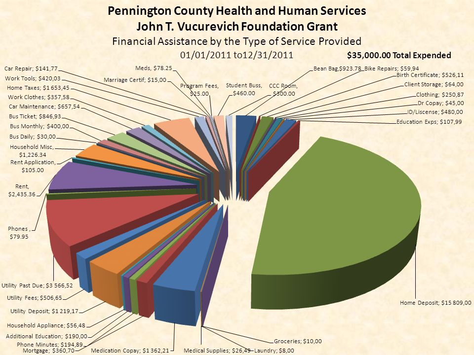Pennington County Health and Human Services John T. Vucurevich Foundation Grant Financial Assistance by the Type of Service Provided 01/01/2011 to12/3