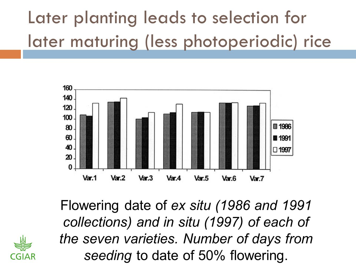 Later planting leads to selection for later maturing (less photoperiodic) rice Flowering date of ex situ (1986 and 1991 collections) and in situ (1997) of each of the seven varieties.