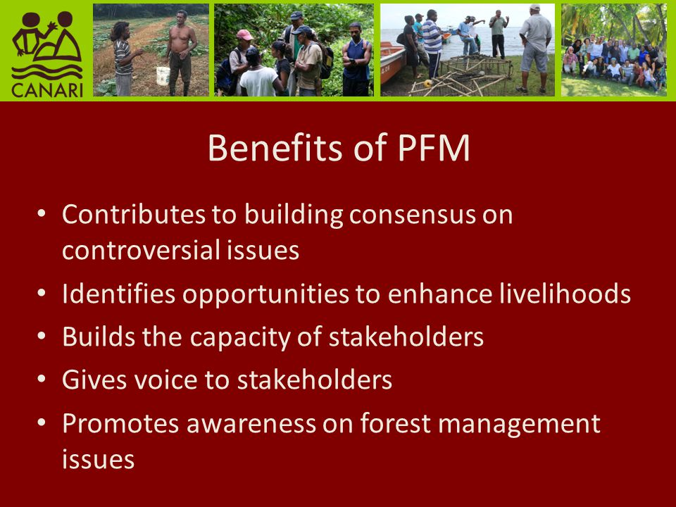 Benefits of PFM Contributes to building consensus on controversial issues Identifies opportunities to enhance livelihoods Builds the capacity of stakeholders Gives voice to stakeholders Promotes awareness on forest management issues