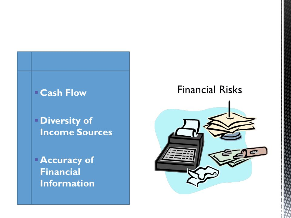Cash Flow Diversity of Income Sources Accuracy of Financial Information