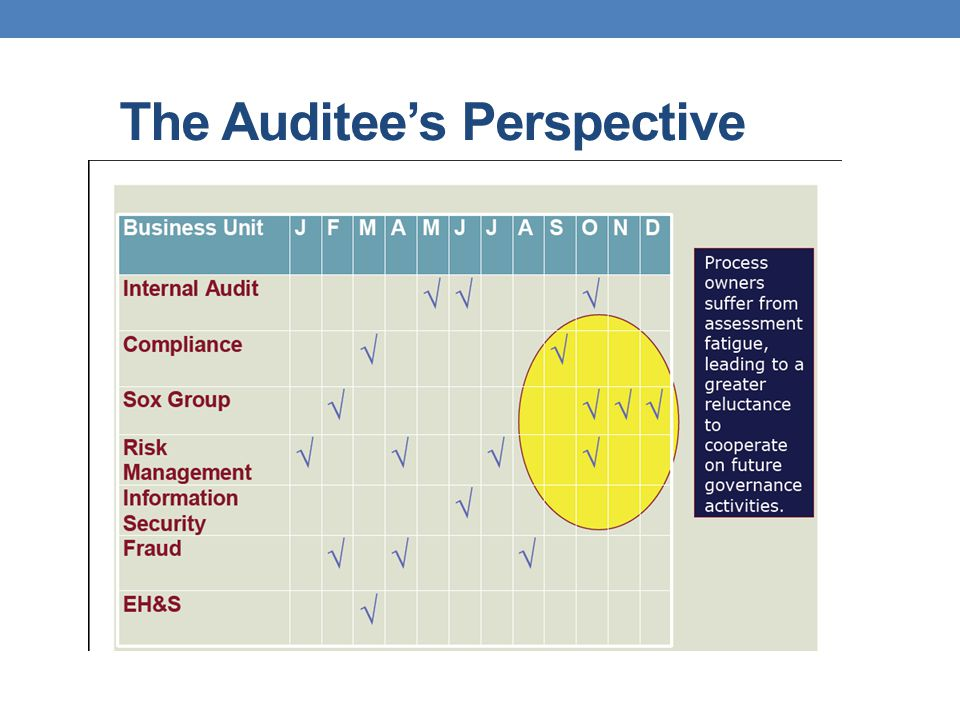 The Auditees Perspective