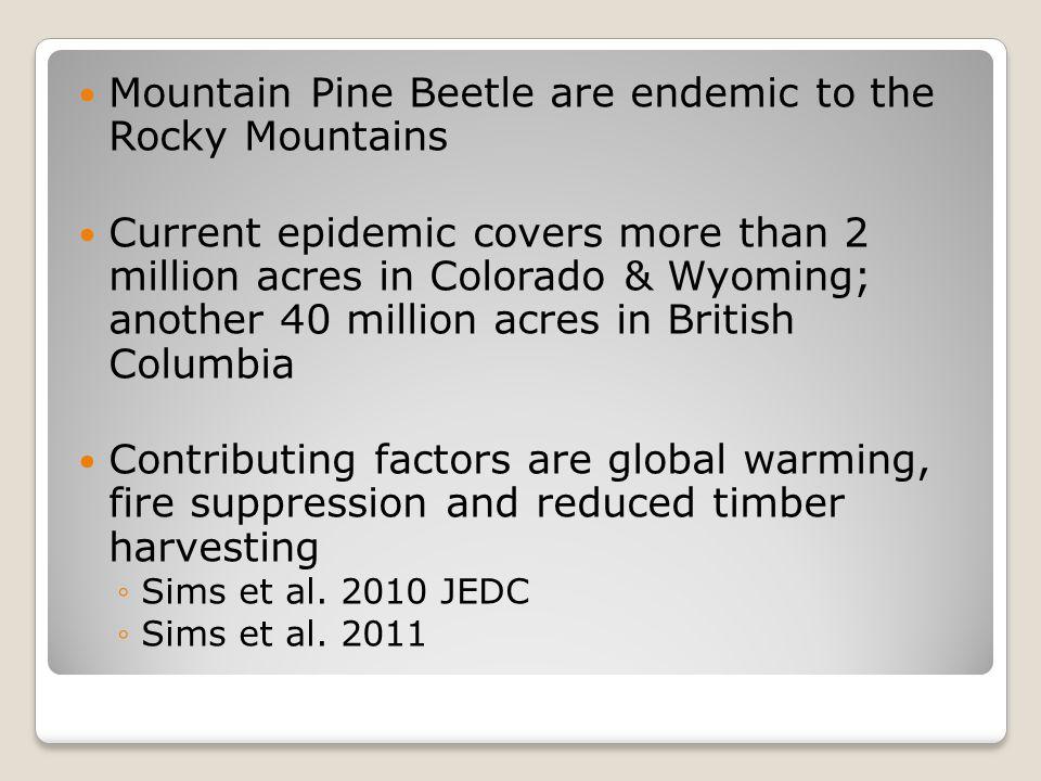 Snowy Range Mountains, WY